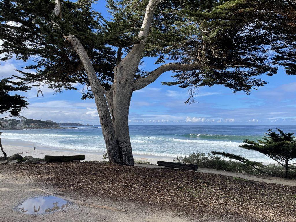 Carmel Point-Carmel Beach, Carmel CA. at Carmel Point