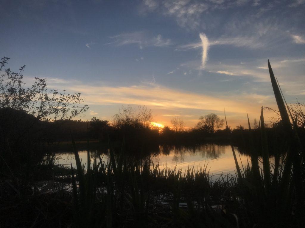 Carmel Valley, CA.-Carmel Valley, CA. Pond at sunrise